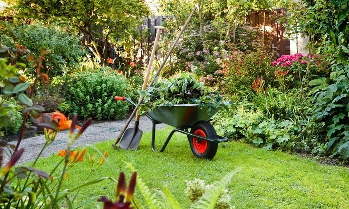 Heeft u een tuinier nodig?